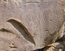 Petroglyph in Cow Canyon near Rangely, CO